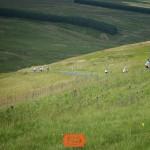 Ride25 Google Tour de Yorkshire148
